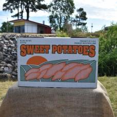 Generic Top for 40 Pound Sweet Potato Bottom